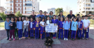 Kepez'de sokak hayvanları Ev'leniyor