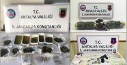 Manavgat'ta jandarmanın uyuşturucu operasyonları
