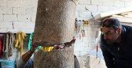 Termessos'taki taş yeni bir kentin habercisi mi?
