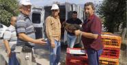 Ziraat Odası'ndan üreticilere ucuz tavuk