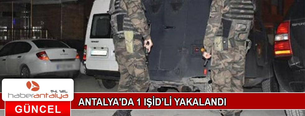 ANTALYA'DA 1 IŞİD'Lİ YAKALANDI