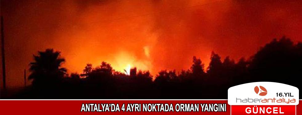 Antalya'da 4 ayrı noktada yangın