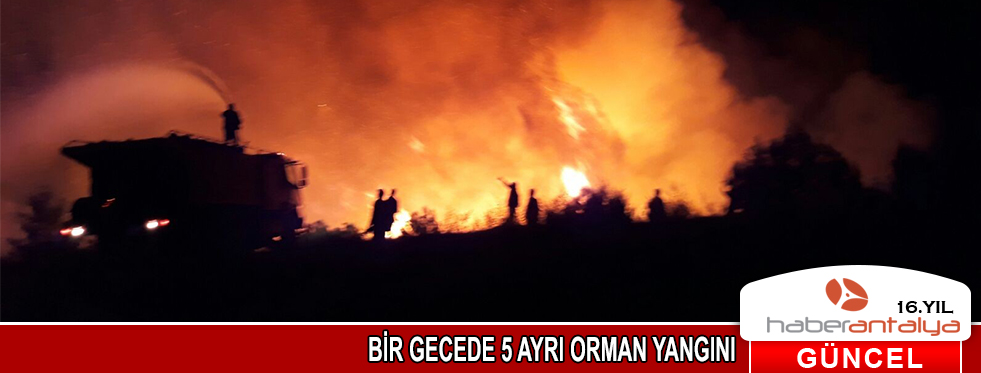 Antalya'da aynı gece 5 ayrı orman yangını