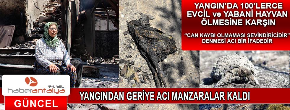 YANGIN'DAN GERİYE ACI MANZARALAR KALDI